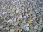Javia beach