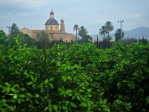 Monastery in an orange grove