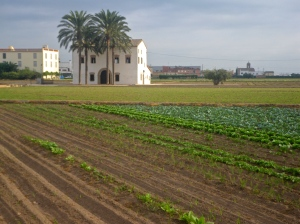 Farms along the Via Verde