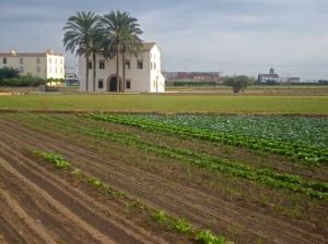 Farms along the Via Verde